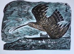 Curlew At Whitby Print