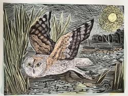 Marsh Owl Print