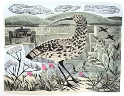 Shippen and Curlew Print