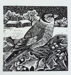 G is for Goldfinch and Snow Print