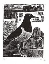 Oystercatcher Print