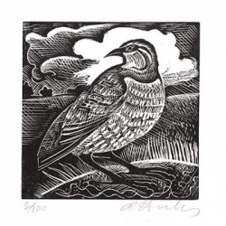 P is for Partridge Print