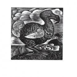 X is for DODO Print