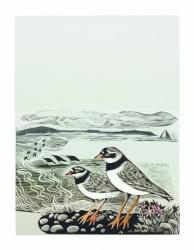 Five Plovers Print