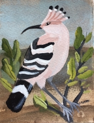 Hoopoe Painting