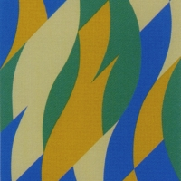 Bridget Riley CBE
