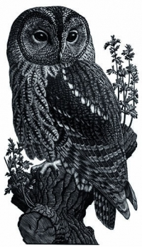 View works by Charles  F Tunnicliffe OBE RA