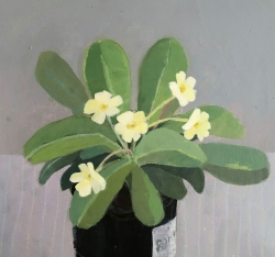 The Last of the Primroses Painting