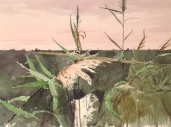 Fenland Reeds Painting