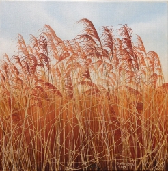 Reeds at Snape Painting