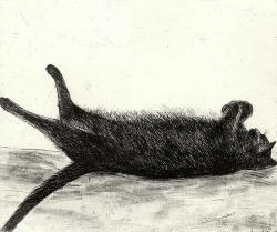 Amelia Sleeping Print