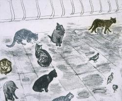Venice Cats Print
