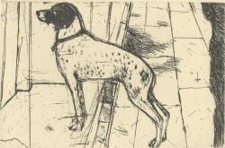Venice Dog Print