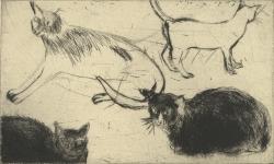 Venice Cats II Print