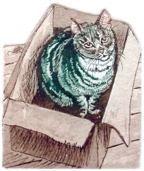 Cat in the Box Print