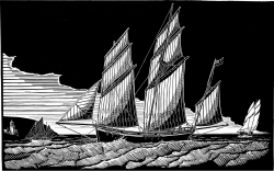 Cornish Lugger, Grayhound Print