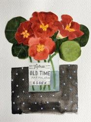Tiptree Nasturtiams Painting
