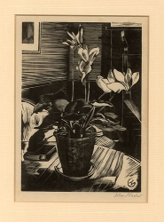Cyclamen Print by John Nash