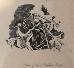 Buttlerflies and Tobacco Plant Print by John Nash
