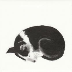 A Dogs Life Print by Kay McDonagh