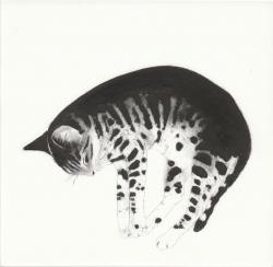 Zonked Print by Kay McDonagh