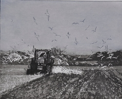 Following The Plough Print