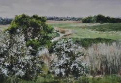 Hawthorn, Walton Backwater Painting
