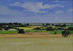Summer Fields, Beaumont cum Moze Painting
