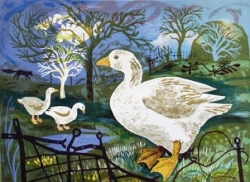 Orchard Goose Print