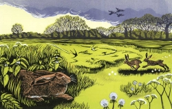 Hares and Swallows Print