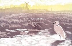 Little Egret, Cley Print