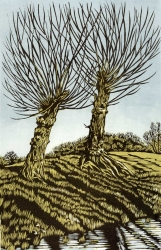 Two Willows Print