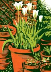 'Spring Green' Tulips Print