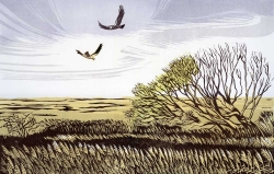 Cley to Salthouse Print
