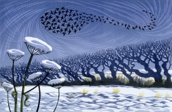 Snow Starlings Print