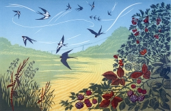 September Swallows Print