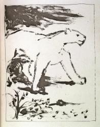 La Lione - Suite  Buffon's Histoire Naturelle Print