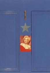 Mariyns Door Print