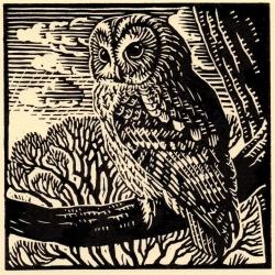 Tawney Owl Print