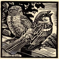 House Sparrows Print