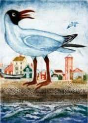 Black Headed Gull Print