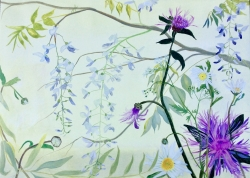 Wisteria, Knapweed and daisies Painting