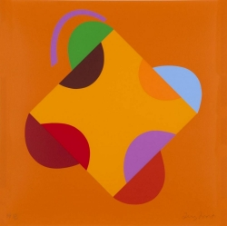 Development of a Orange Square Print