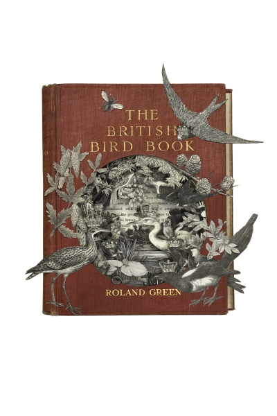 The British Bird Book by Alison Stockmarr
