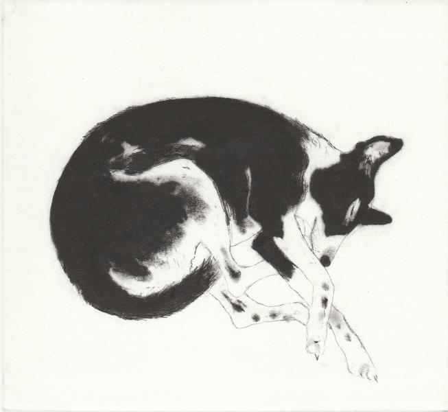 Shut eye by Kay McDonagh