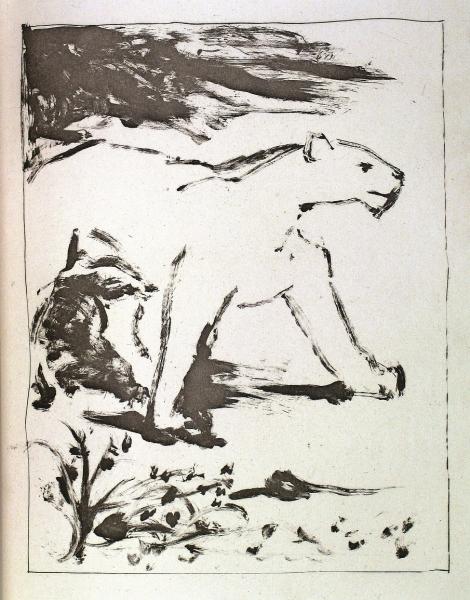 La Lione - Suite  Buffon's Histoire Naturelle