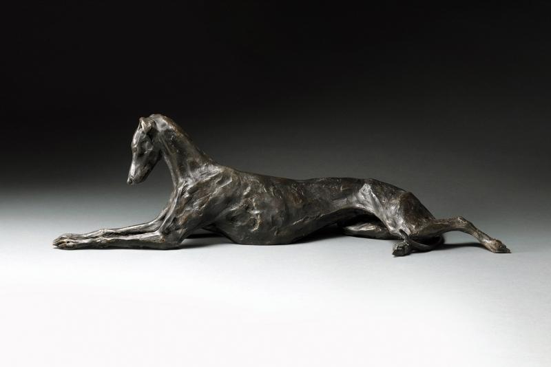 Stretching Greyhound Lurcher