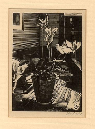 Cyclamen by John Nash CBE RA (1893 - 1977)